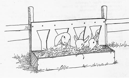 Фото кормушек для коз своими руками